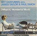 (What A) Wonderful World
