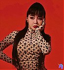Lee Park Bom