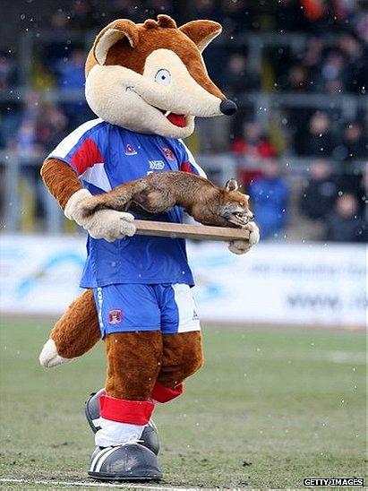 Olga the Fox
