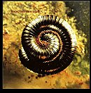 Closer-Nine Inch Nails (1994)