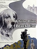 White Bim Black Ear