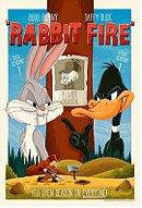 Rabbit Fire
