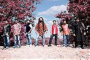 Nasya Band - Musician
