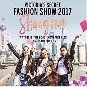 The Victoria's Secret Fashion Show (2017)