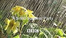 A Small Summer Party