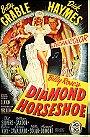 Diamond Horseshoe
