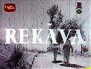 Rekava