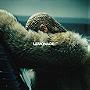 Beyoncé: Lemonade                                  (2016)