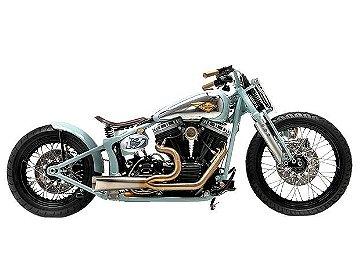 Harley Davidson Strike True II
