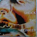 Shock the Monkey (Single)