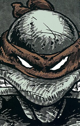 TMNT Collected Book Volume One