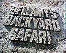 Bellamy's Backyard Safari