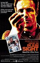 Hide in Plain Sight (1980)