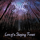 Lore of a Sleeping Forest