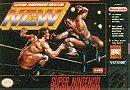 Natsume Championship Wrestling