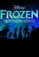 Lego: Frozen Northern Lights (2016)