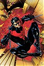 Nightwing (New 52)