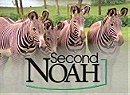 Second Noah                                  (1996-1998)